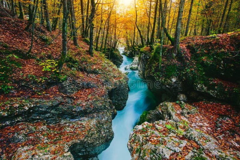Fantastische mening van de canion Mostnica (Mostnice Korita) royalty-vrije stock foto