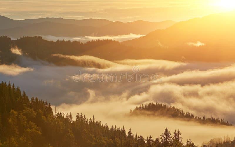 Fantastische mistige dag en heldere heuvels door zonlicht Dramatische morni royalty-vrije stock fotografie