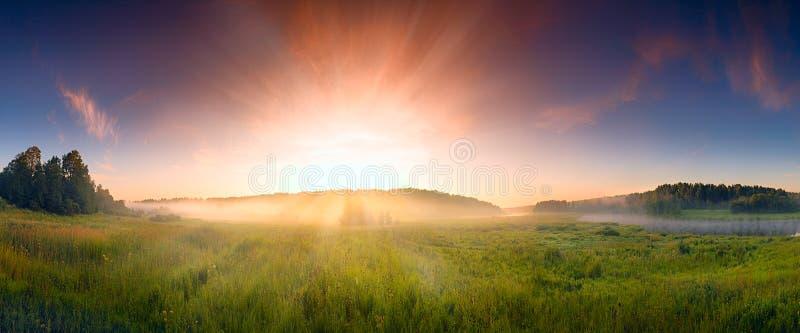 Fantastische mistige rivier met vers groen gras in het zonlicht stock afbeeldingen