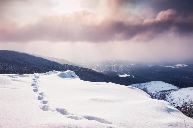 Fantastische Winterlandschaft bei Sonnenuntergang lizenzfreie stockfotografie