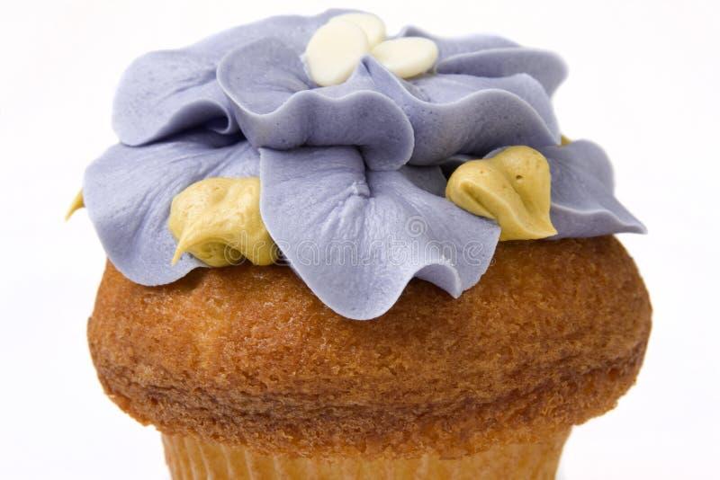 Fantastischer feinschmeckerischer kleiner Kuchen lizenzfreies stockfoto