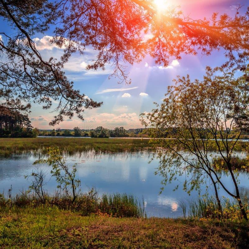 Fantastischer Sonnenuntergang Sonnige Landschaft des schönen Abends mit Bäumen, Gras und Fluss Majestätische Herbstlandschaft lizenzfreies stockfoto
