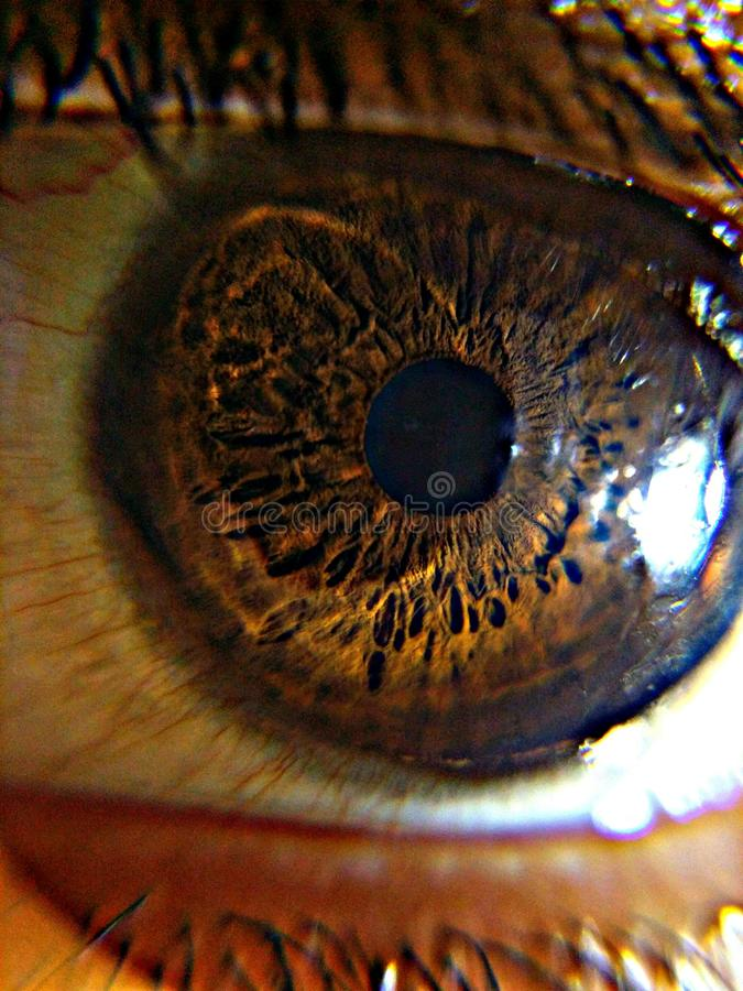 Fantastisk ögontapet UHD royaltyfri bild