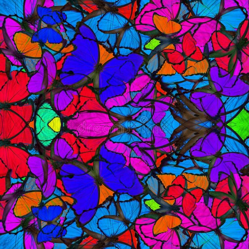 Fantastisk färgrik bakgrund som göras av sammanställningen av blåa Morp arkivfoton