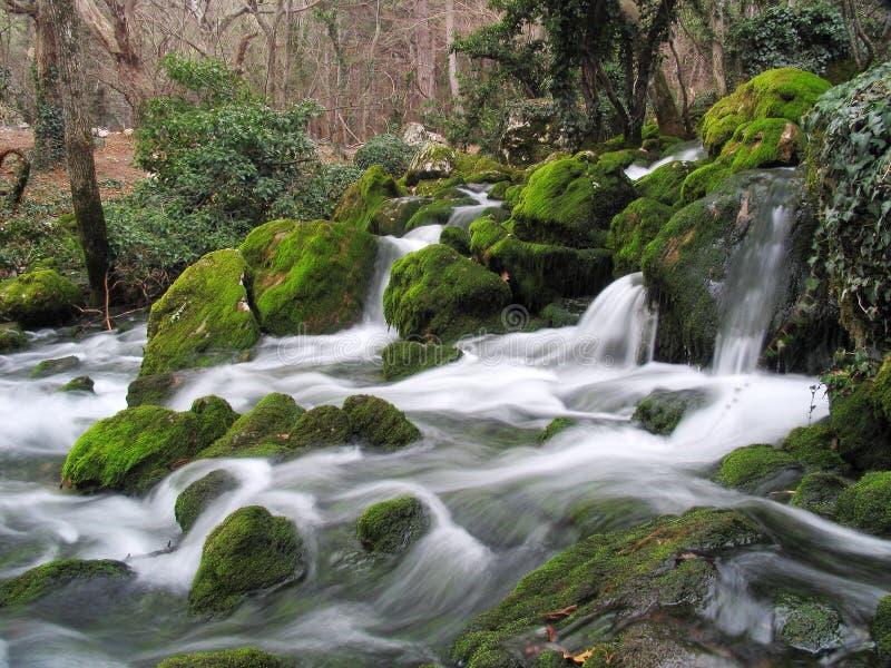 fantastisk flod royaltyfri fotografi