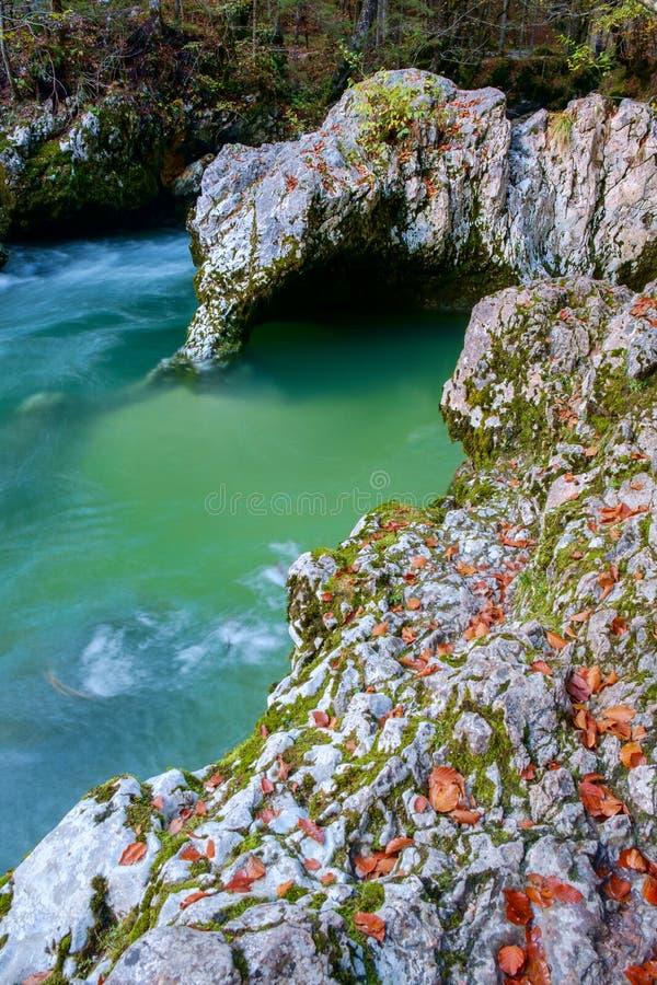 Fantastisk flod i bergen, Mostnica Korita, Julia fjällängar (Ele royaltyfria foton