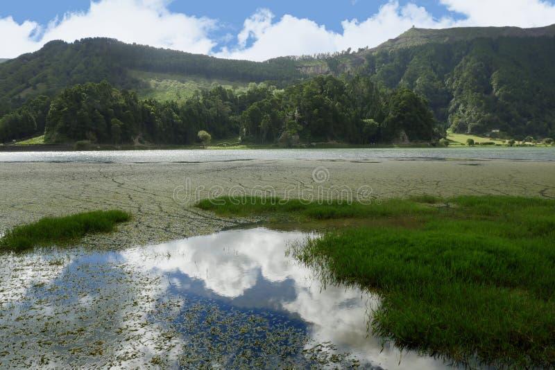 Fantastisk härlig landskapgräsplan sjö Lagoa Verde i Sete Cidades av den SaoMiguel ön av Azores royaltyfria bilder