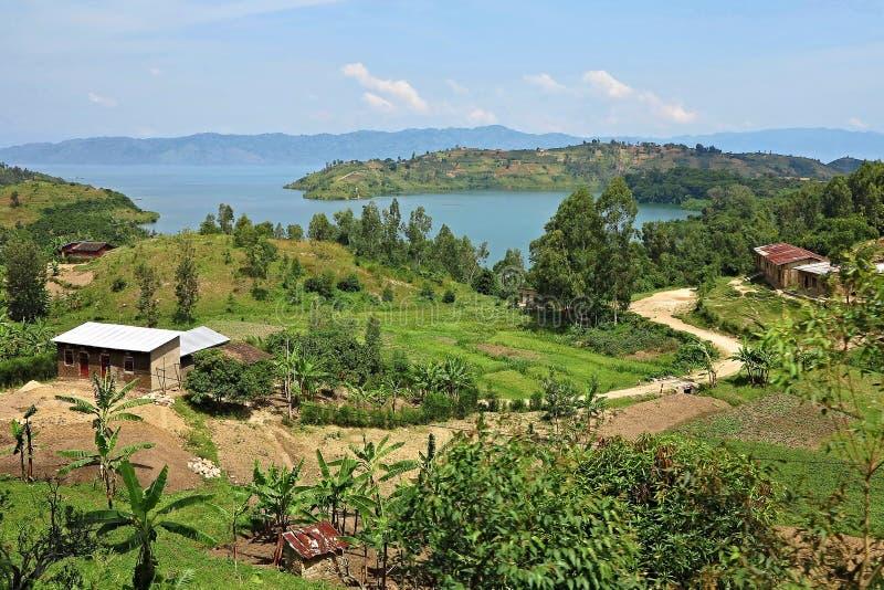 Fantastisk natur i afrikanen Kongo arkivbild