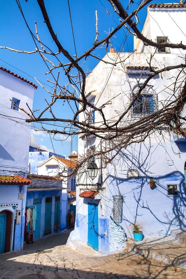 Fantastisk sikt av gatan i den blåa staden av Chefchaouen Loca royaltyfria bilder