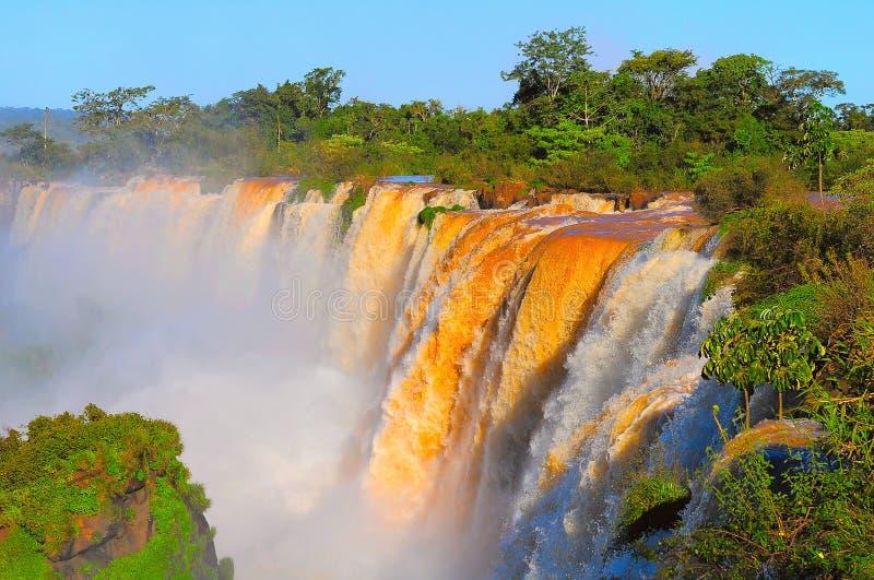 Fantastisk sikt av Iguazu Falls på solnedgångtid royaltyfria bilder