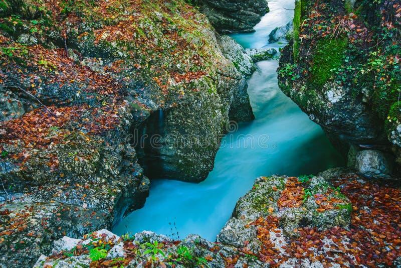 Fantastisk sikt av kanjonen Mostnica arkivbilder