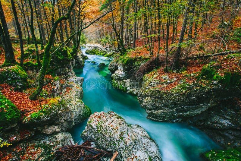 Fantastisk sikt av kanjonen Mostnica arkivfoton