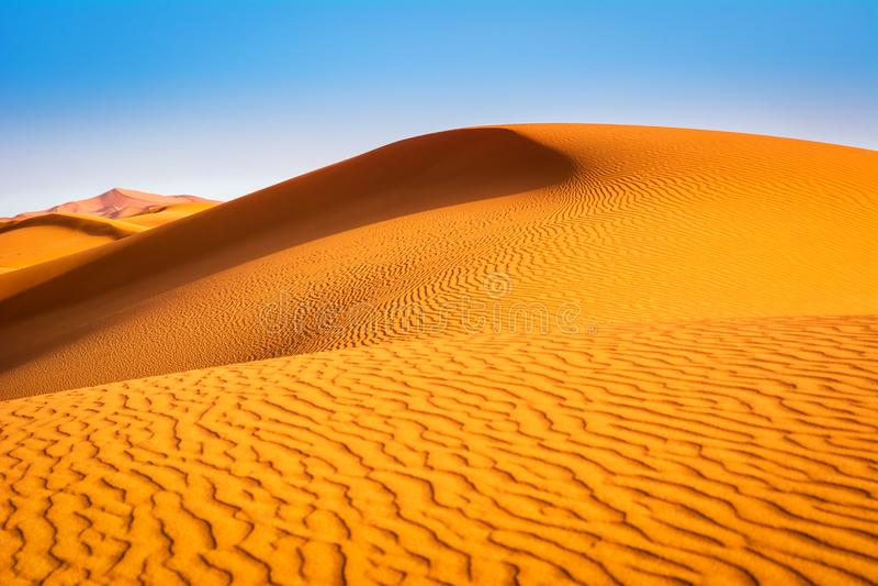 Fantastisk sikt av sanddyn i Sahara Desert Läge: Sahar royaltyfri bild