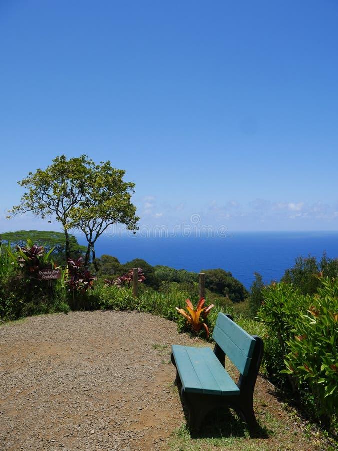 Fantastisk sikt från botanisk trädgård på Maui arkivfoton