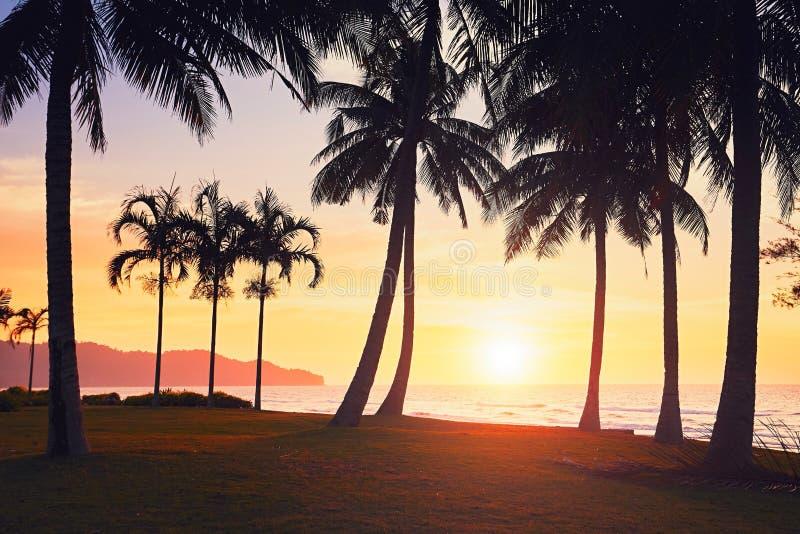 Fantastisk solnedgång på stranden arkivfoto