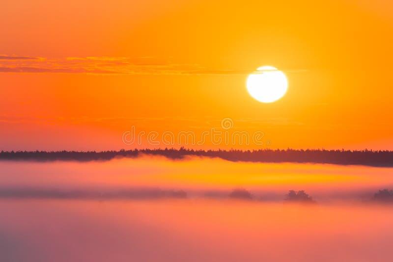 Fantastisk soluppgång över Misty Landscape Scenisk sikt av den dimmiga morgonen royaltyfri fotografi