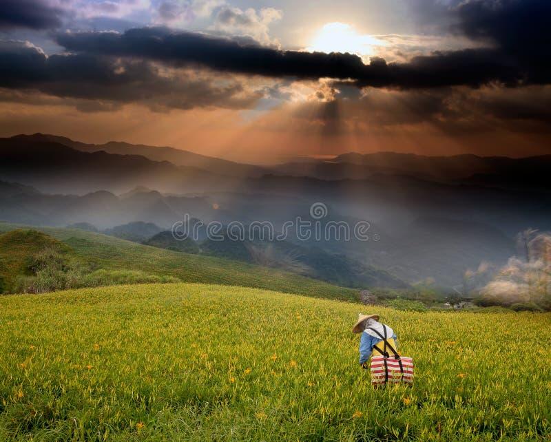 Fantastisk soluppgång och berg royaltyfri bild