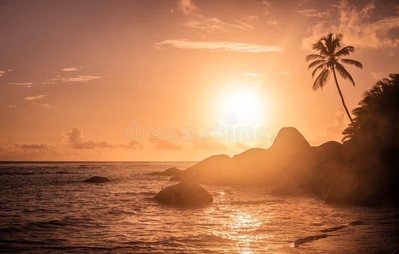 Fantastisk soluppgång på den Seychellerna ön royaltyfri foto