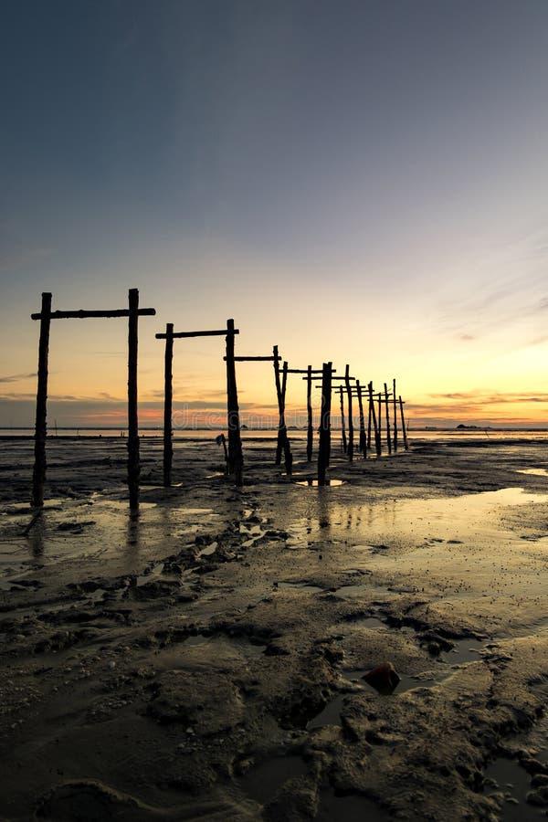 Fantastisk tropisk solnedgångbakgrund, trästruktur på den leriga stranden fotografering för bildbyråer