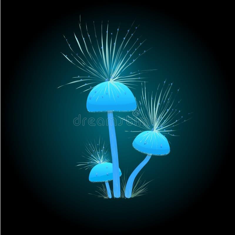 Fantastiskt glödande ljus - blåttchampinjoner Spelar symbolen med fluffiga champinjoner på en mörk bakgrund Champinjoner med styc stock illustrationer