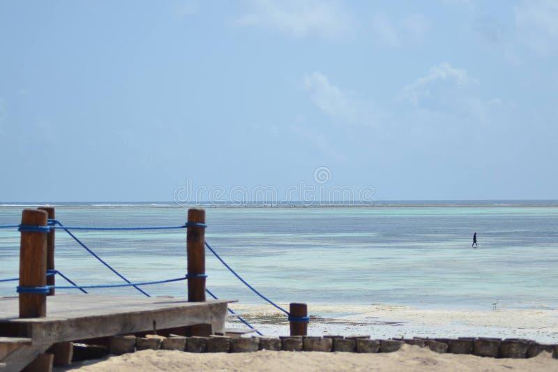 Fantastiskt hotell för tidvattenZanzibar strand royaltyfri fotografi