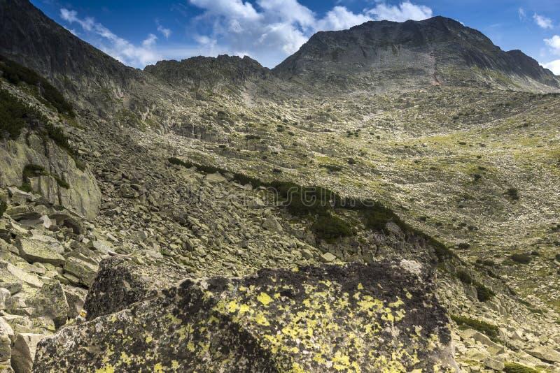 Fantastiskt landskap av det Momin Dvor maximumet royaltyfri foto