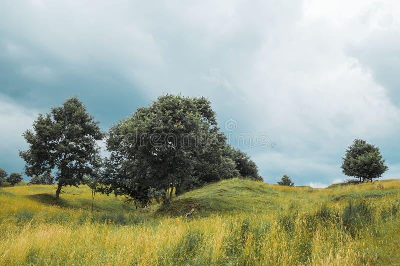 Fantastiskt landskap, land av Hateg, Rumänien arkivbild