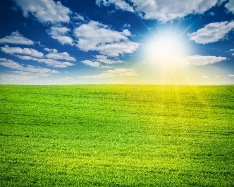 Fantastiskt landskap med det gröna fältet, solen och molnig himmel arkivbild