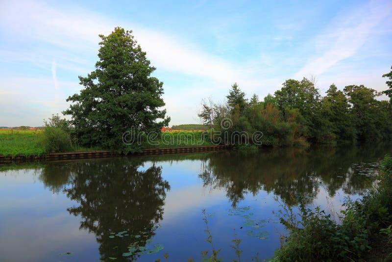 Fantastiskt naturlandskap på dag för sen sommar Yttersida för flodvatten, gröna växter och träd och hus långt borta på bakgrund royaltyfri bild