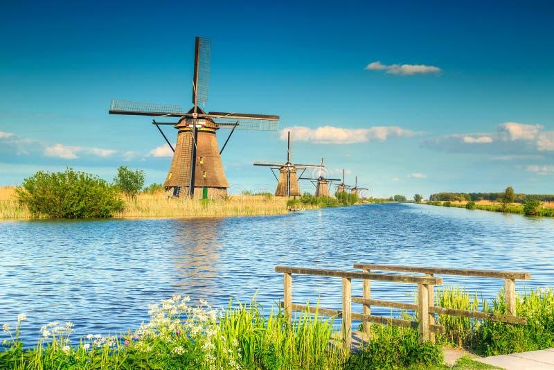 Fantastyczni drewniani wiatraczki w Kinderdijk muzeum, holandie, Europa obraz royalty free