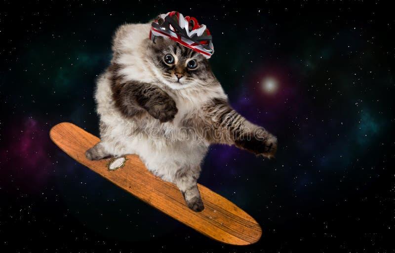 Fantastyczny jeździć na deskorolce kot w przestrzeni fotografia stock