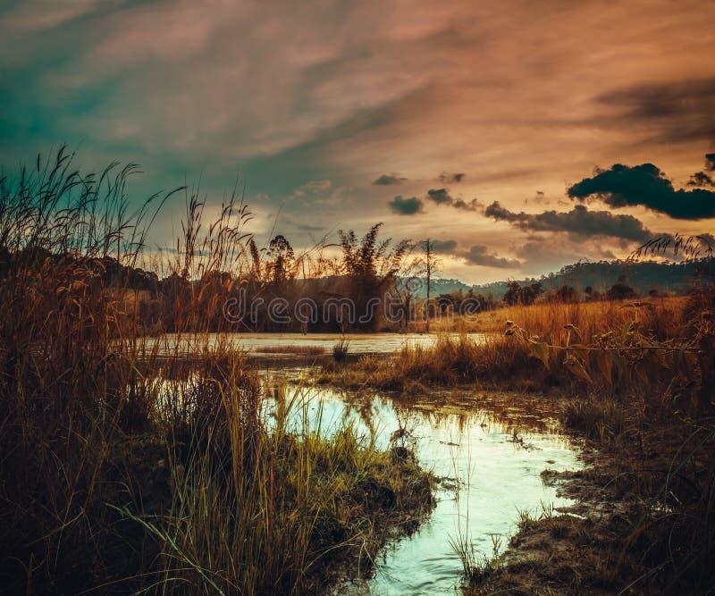 Fantastyczny krajobraz pomarańczowy niebo z światłem słonecznym nad jezioro w lesie obraz stock
