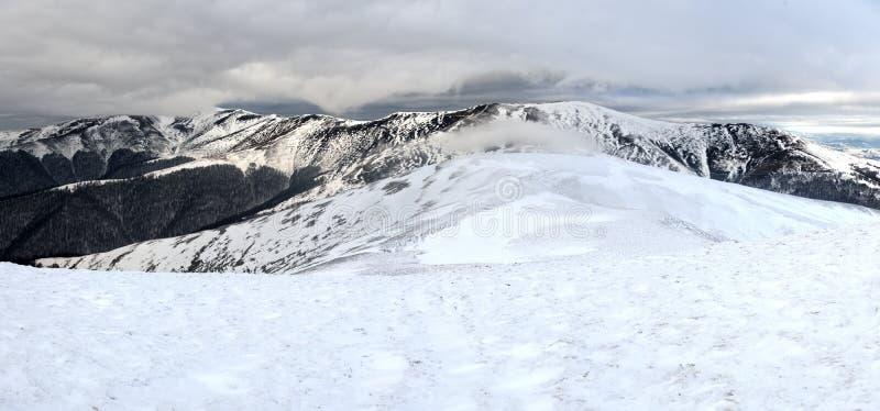 Fantastyczny zima krajobraz zdjęcie stock