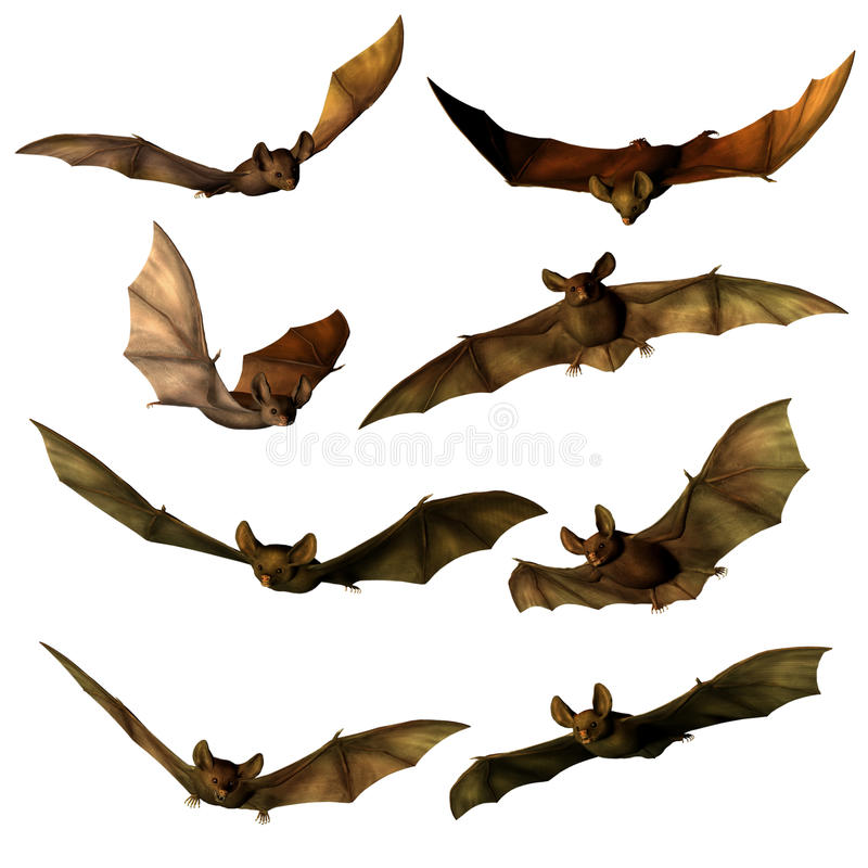 Fantasy bats stock illustration