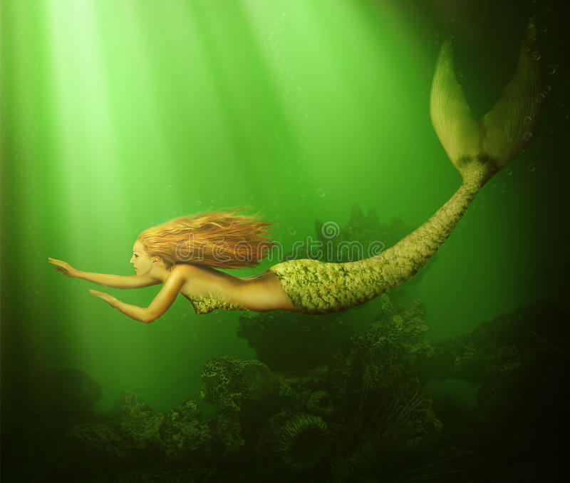 Fantasy. beautiful woman mermaid. With fish tail and long developing hair swimming in the sea underwater vector illustration