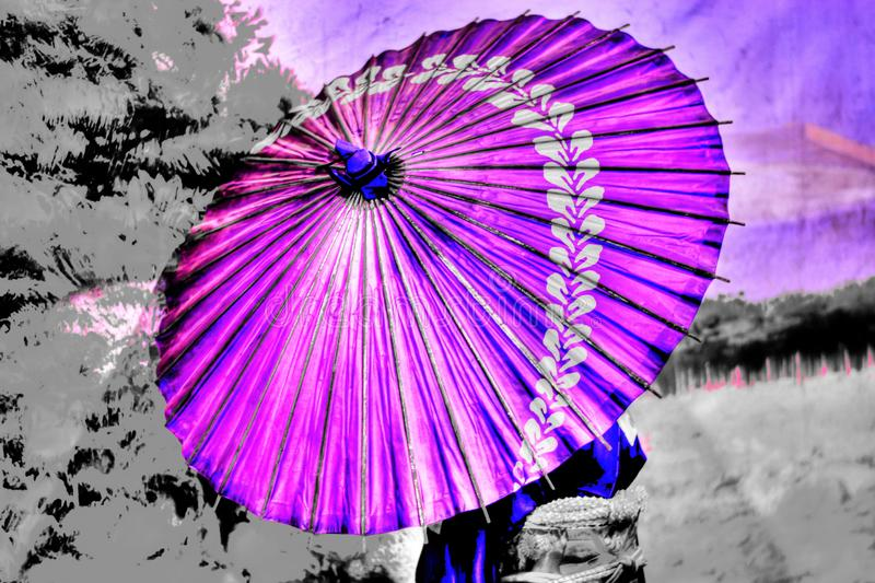 An umbrella of purple color stock photos