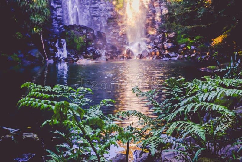 Fantasy fairy landscape - Wairoa / Te Wairere waterfall in Kerikeri, Far North, Northland, New Zealand, NZ. Fantasy fairy landscape - Wairoa / Te Wairere stock photo