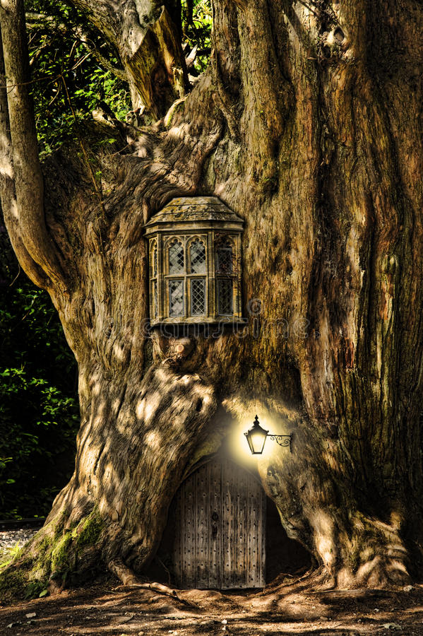 Fantasy fairytale miniature house in tree. Fairytale fantasy house in tree trunk in forest royalty free stock photography