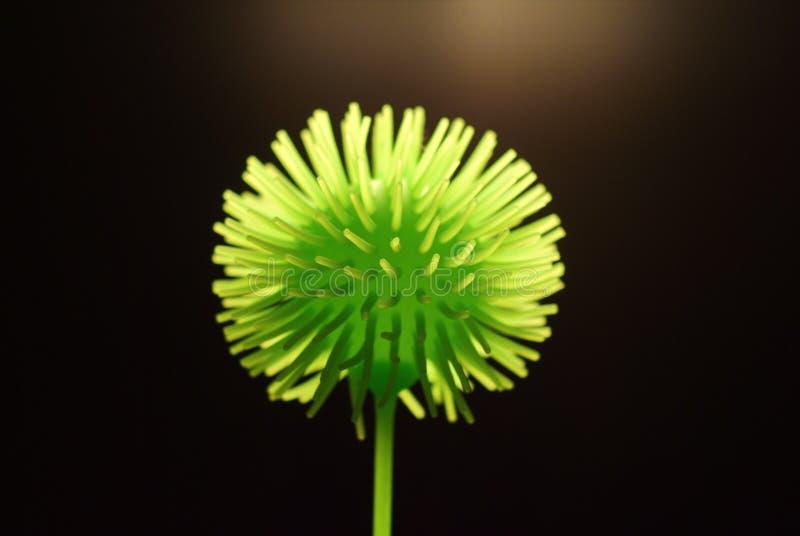 Fantasy flower. Enigmatic macro the world of dandelion stock photos