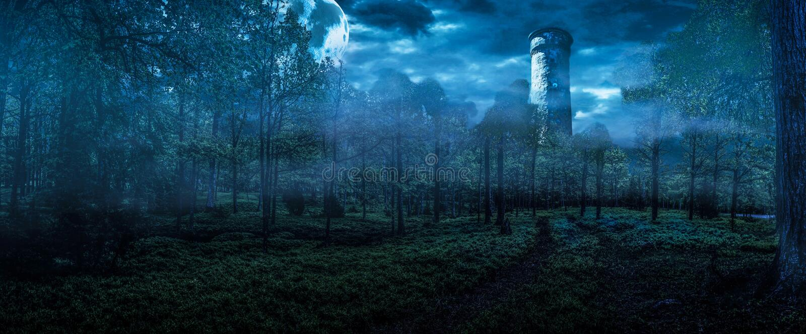Fantasy Forest With Full Moon. A panorama of an enchanted forest in a full moon night with an old tower and a big moon vector illustration