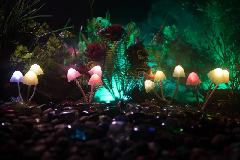 Fantasy glowing mushrooms in mystery dark forest close-up. Beautiful macro shot of magic mushroom or souls lost in avatar forest. Fairy lights on background stock photos
