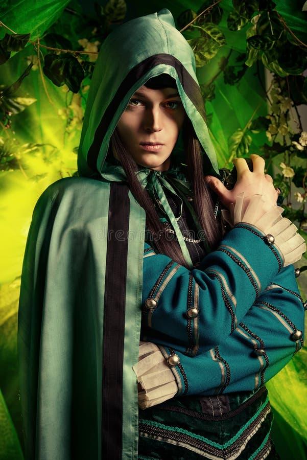 Fantasy hero. Noble fairy elf in the magic forest. Fantasy. Fairy tale, magic stock photography