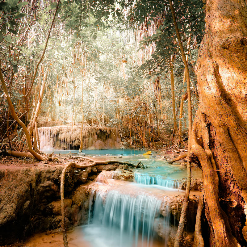 Free Fantasy Jangle Landscape With Turquoise Waterfall Stock Images - 61127114