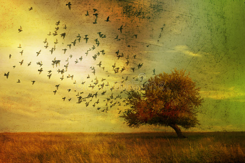 Fantasy landscape. Grunge fantasy landscape with birds flying towards a lone tree. Surrealist illustration royalty free illustration
