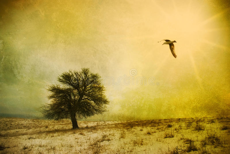 Fantasy landscape. Grunge fantasy landscape with bird flying towards a lone tree. Surrealist illustration royalty free illustration