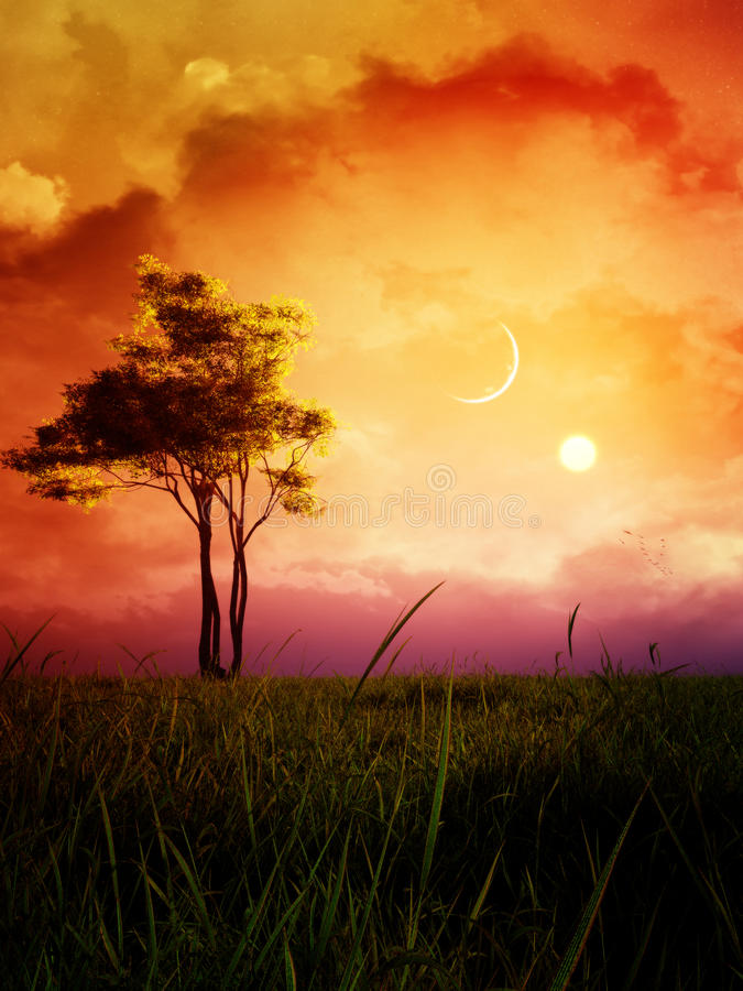 Fantasy Landscape With Sunset And Alder Late Summer Tree. A fantasy type of epic late summer landscape with alder tree, moon, setting sun, meadow, majestic vector illustration