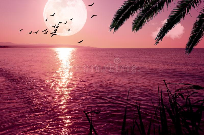 Fantasy landscape with super moon and flying birds on the coast at sunset. Sunrise, sea, seascape, sky, water, dark, moonlight, ocean, purple, full, nature stock images