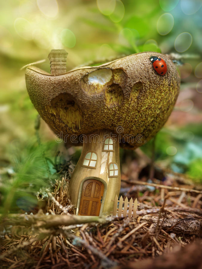 Fantasy mushroom house stock images
