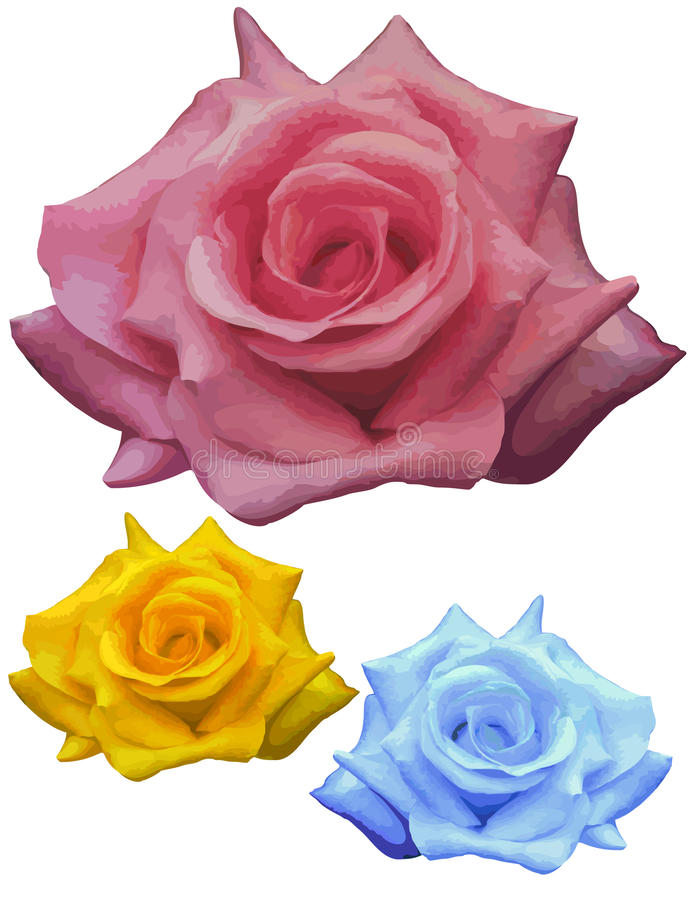 Fantasy roses, and one real