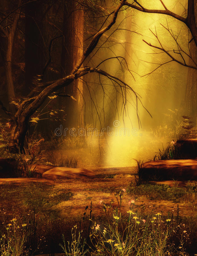 Fantasy scenery background in the woods. A fantasy scene in the woods with a late afternoon sun casting its rays of light